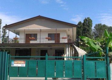 Гостевой дом «Violla»