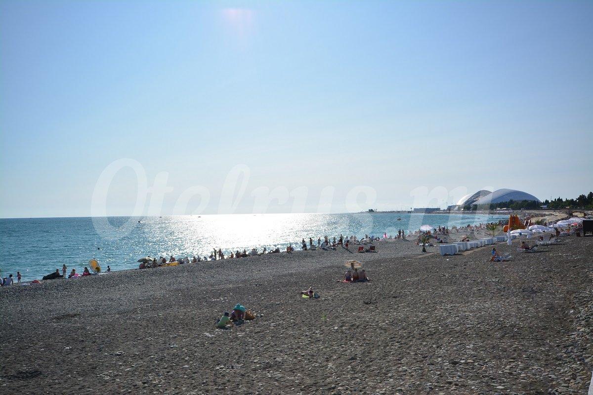 Совхоз россия адлер пляж фото 2018